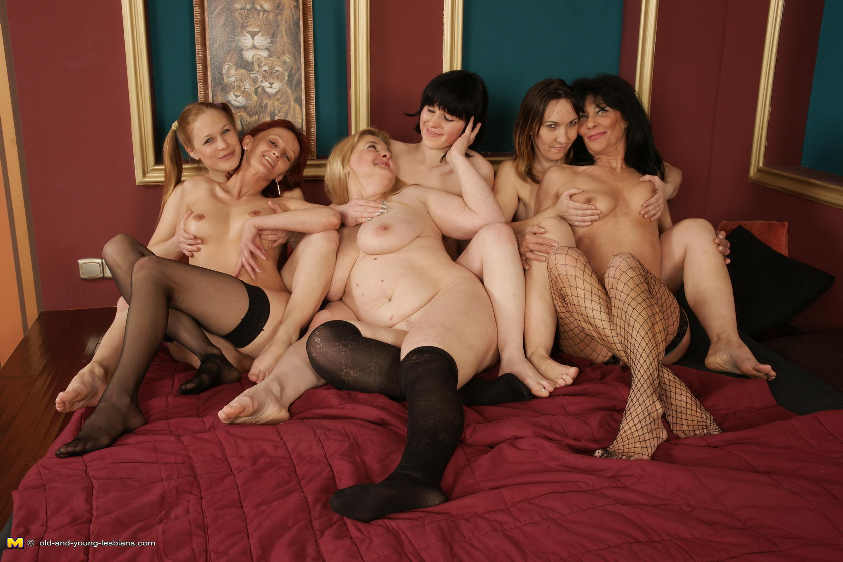 Six old and young lesbians having great sex.